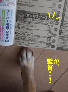 003_20120730184925.jpg