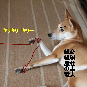 004_20120712193651.jpg