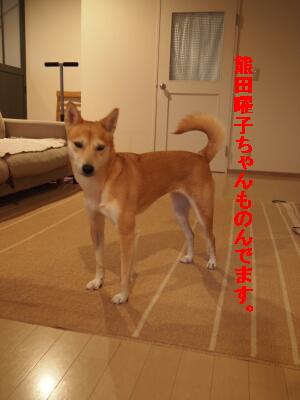 004_20120805192803.jpg