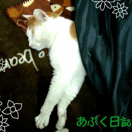 2012-12-30-19-48-00_deco-1.jpg