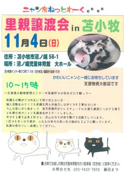 20121029-4.jpg