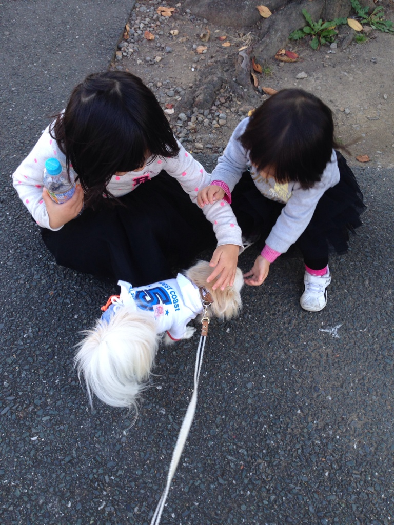 fc2blog_20141123205346a8f.jpg