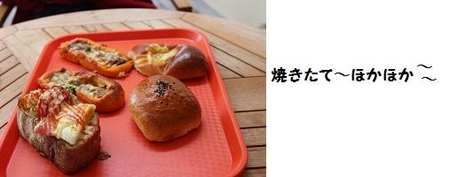 IMG_9303.jpg