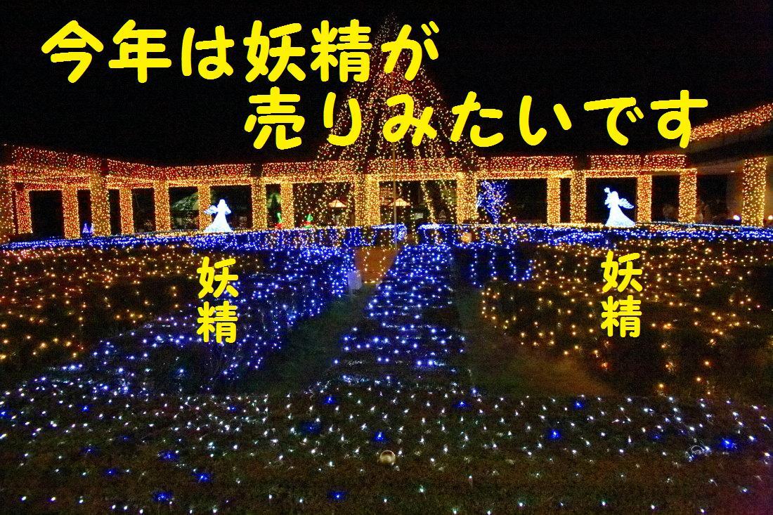 10_20121204135811.jpg