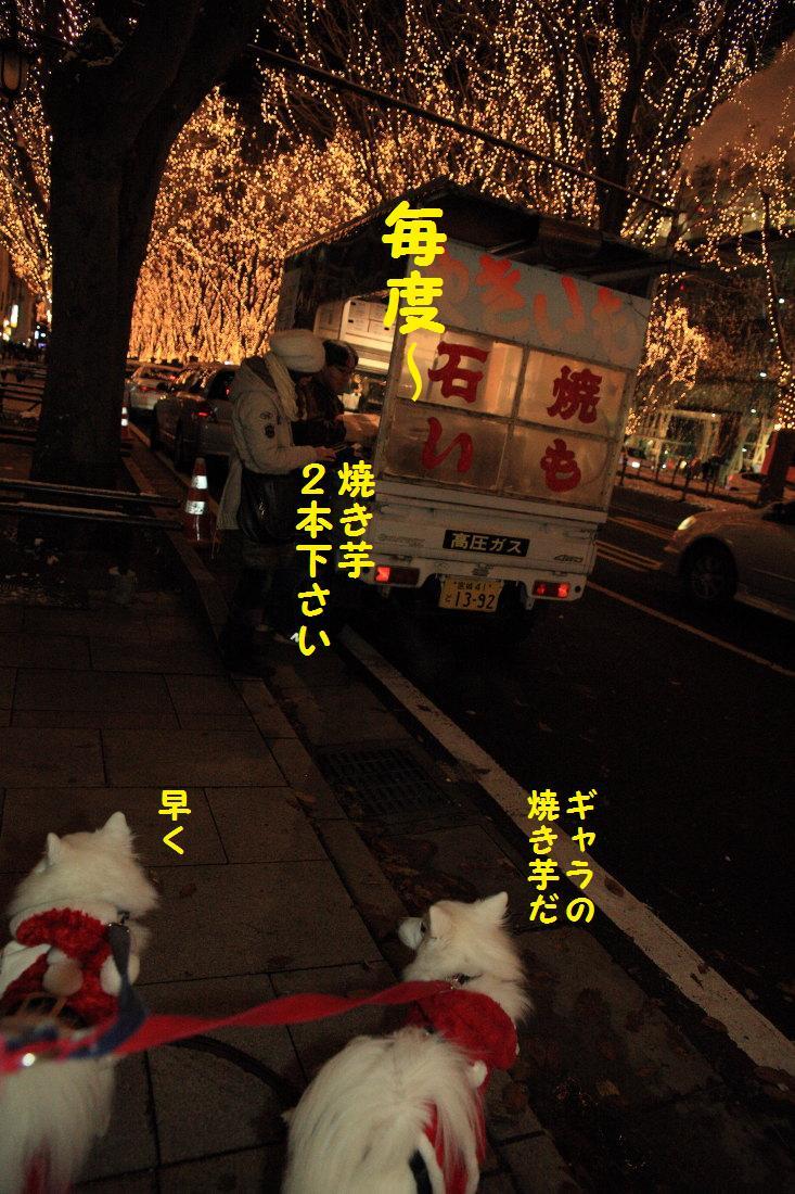 10_20121210102230.jpg