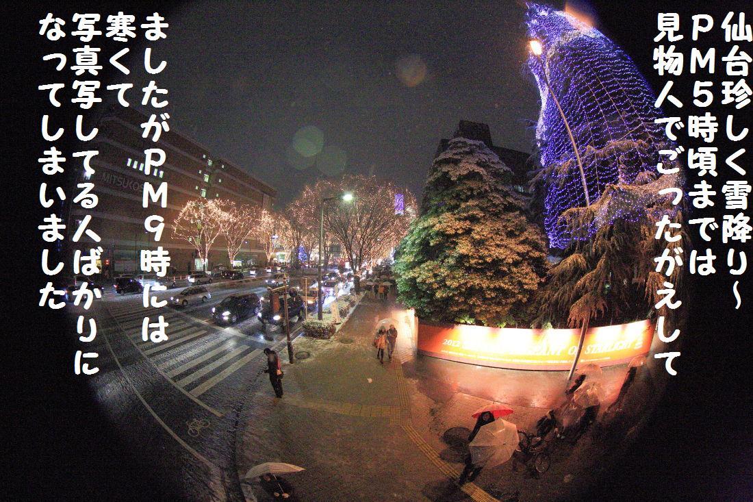 11_20121224194730.jpg