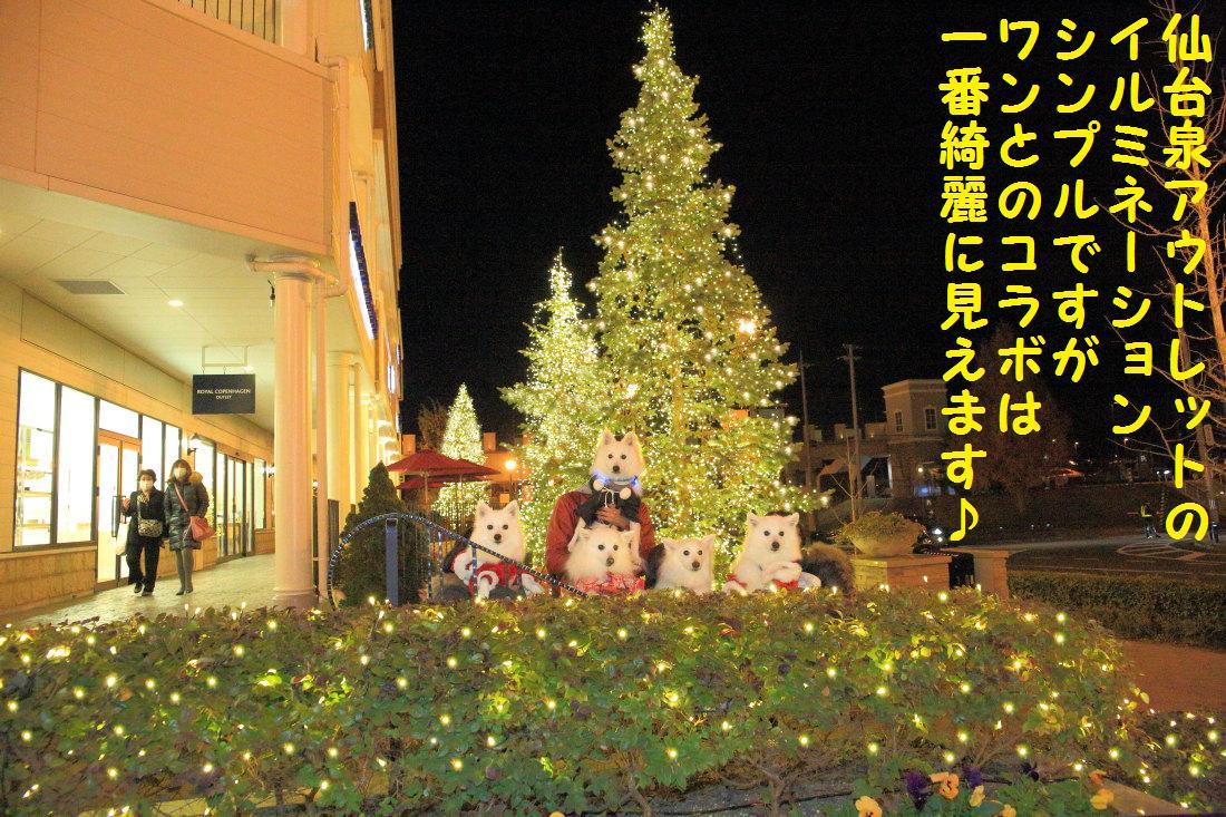 12_20121206124549.jpg