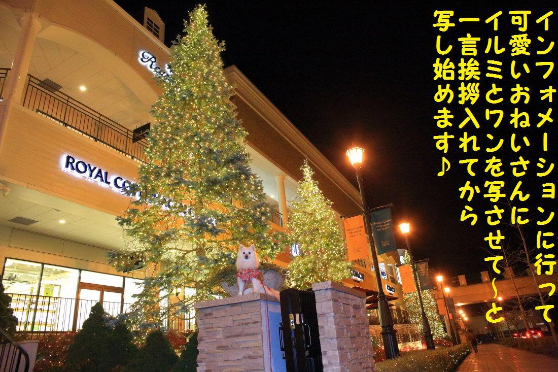 1_20121206124401.jpg