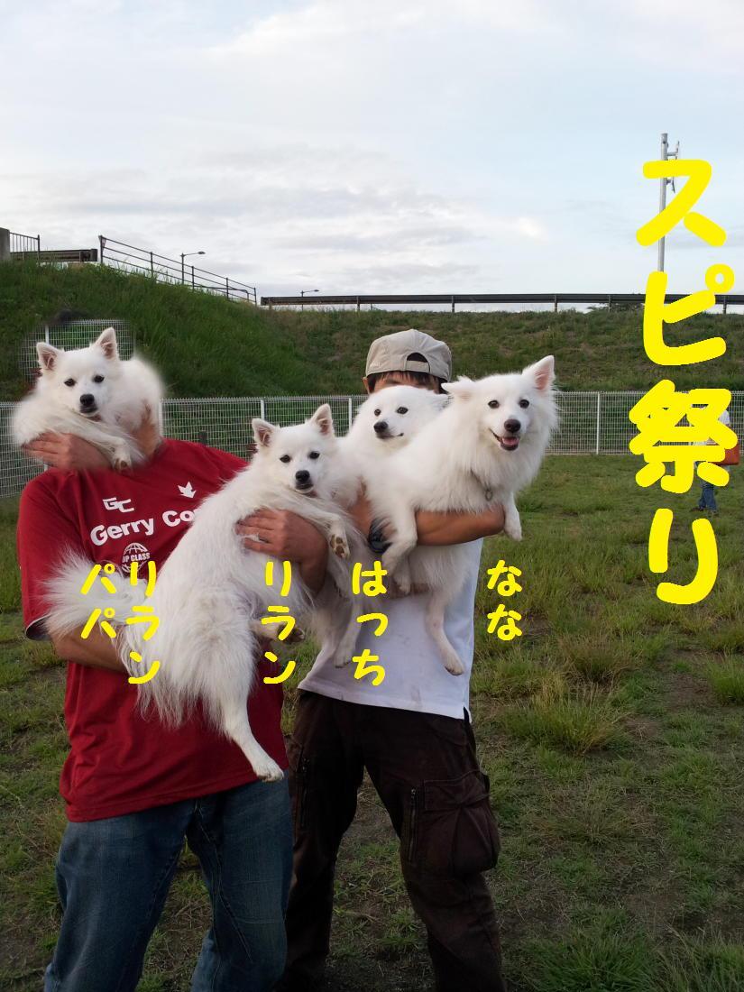 20120922_171712.jpg