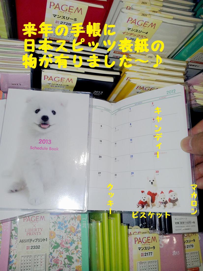 20121027_090149.jpg