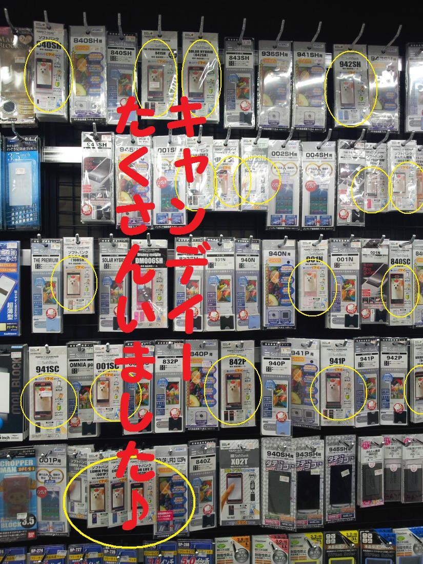 20121125_112405.jpg