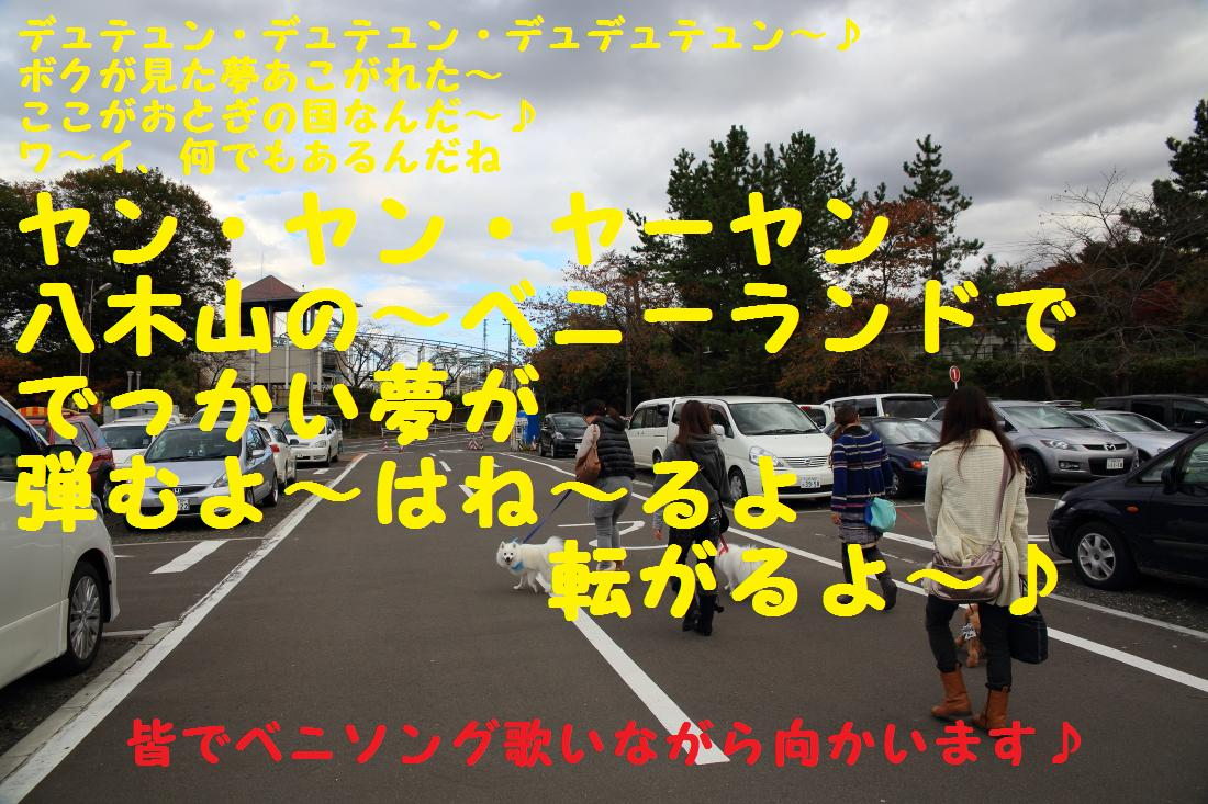 2K5A0063.jpg