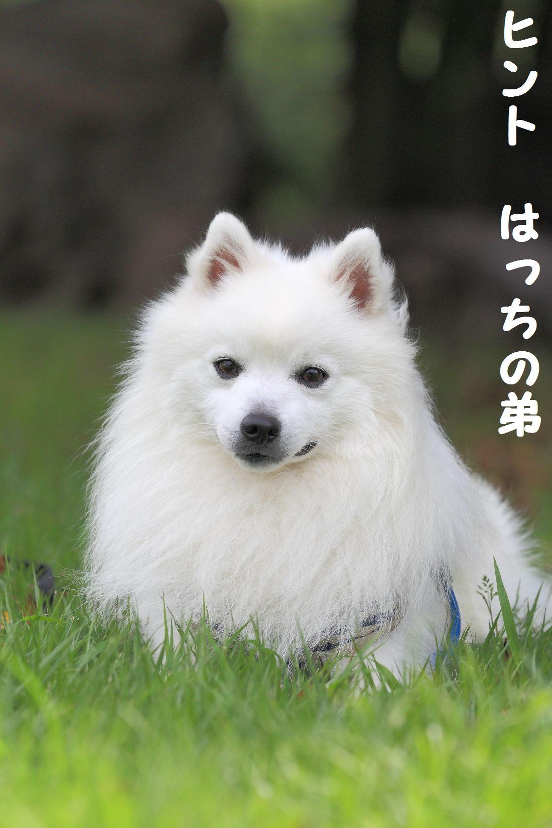 2K5A0925.jpg