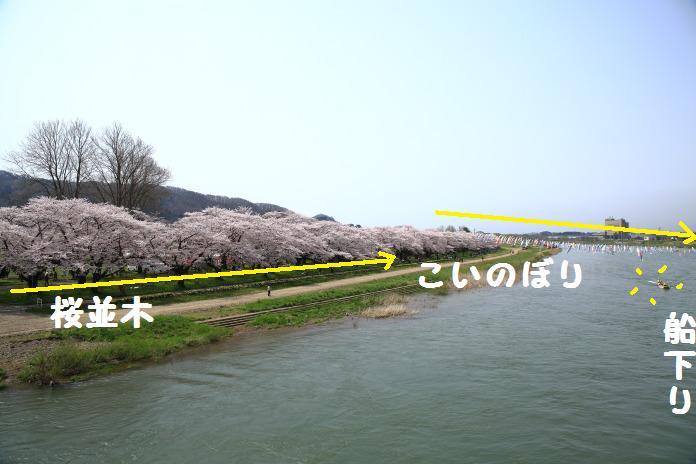 2K5A3675.jpg