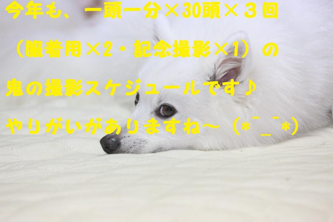 2K5A4761.jpg