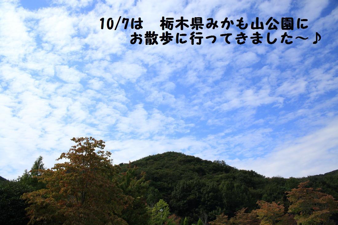 2K5A7328.jpg