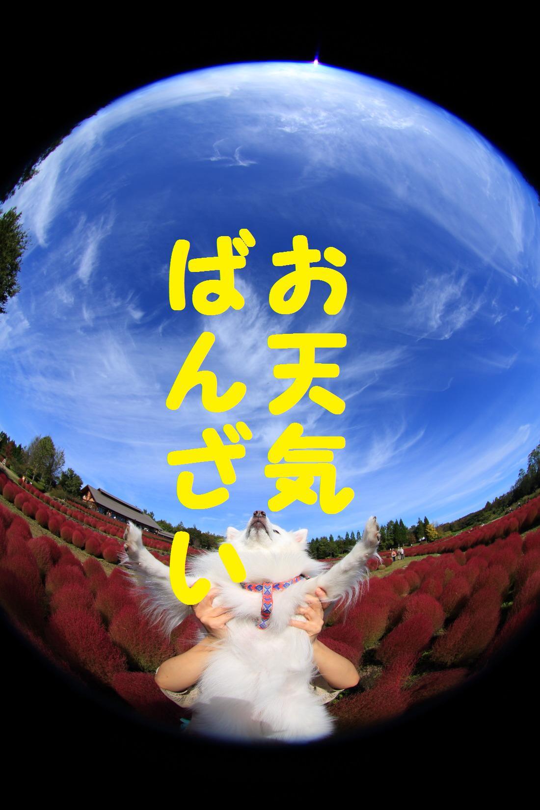 2K5A7803.jpg