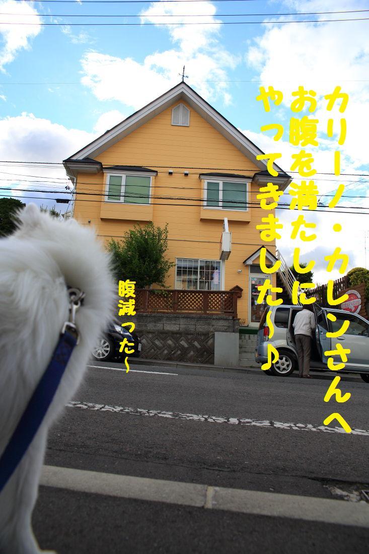 2K5A8912.jpg