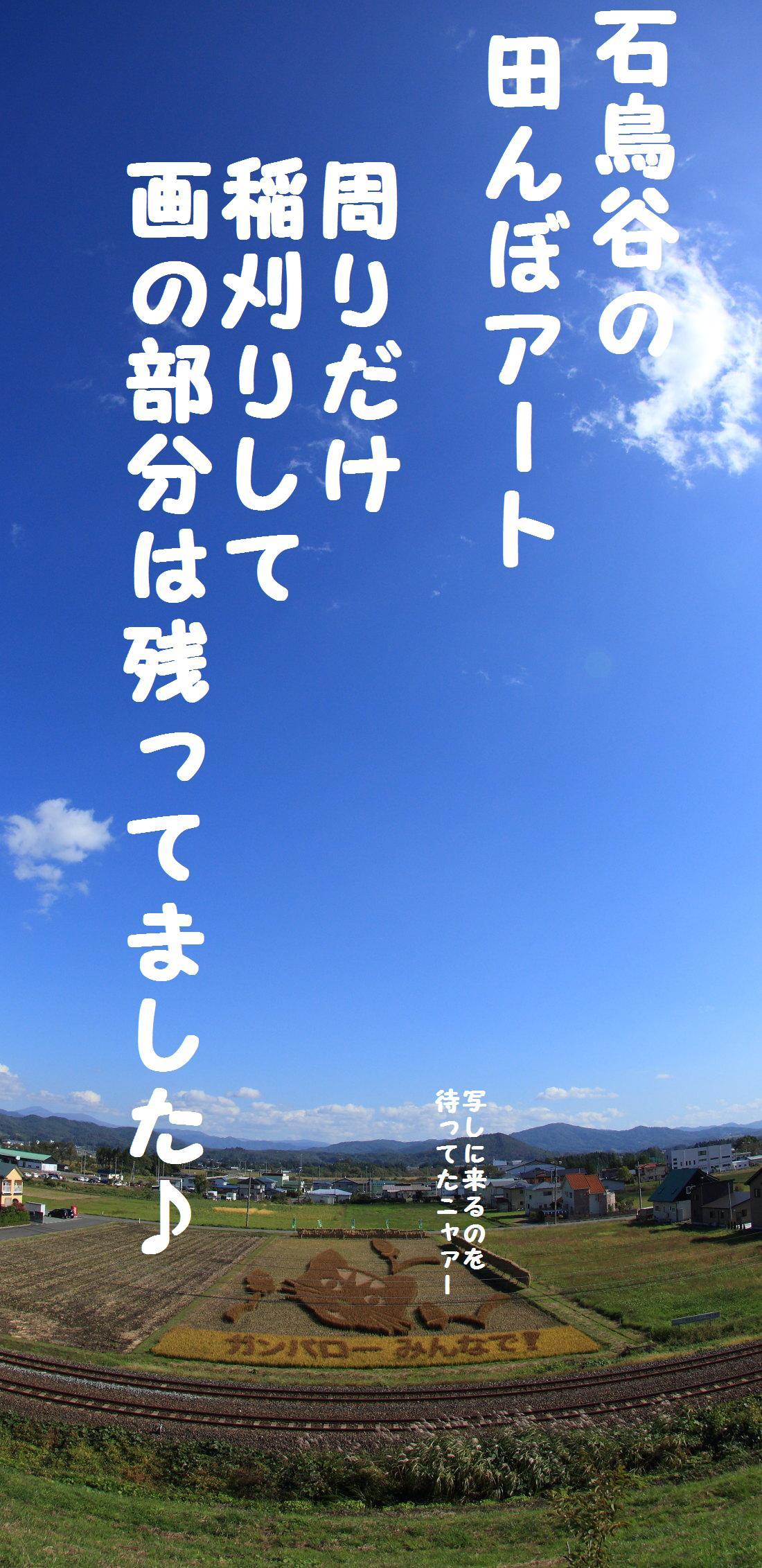 2K5A9255.jpg