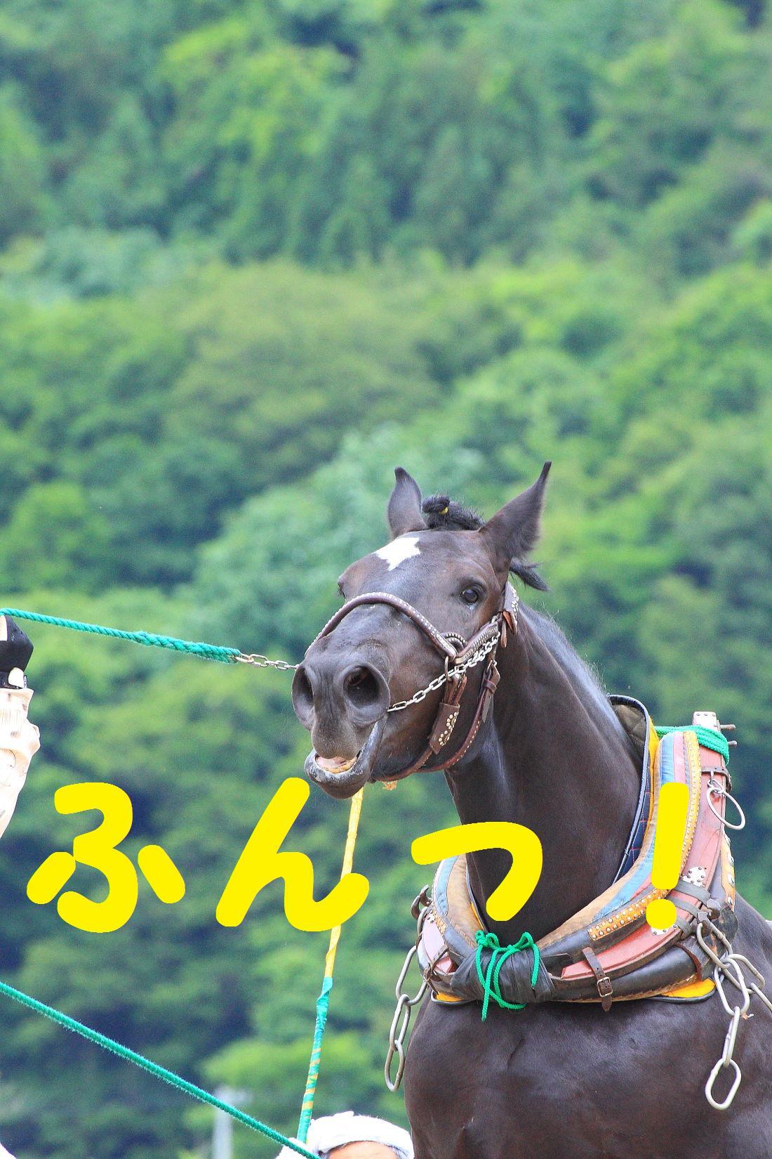 2K5A9548.jpg
