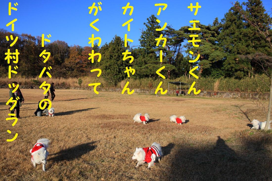 2_20121204135557.jpg