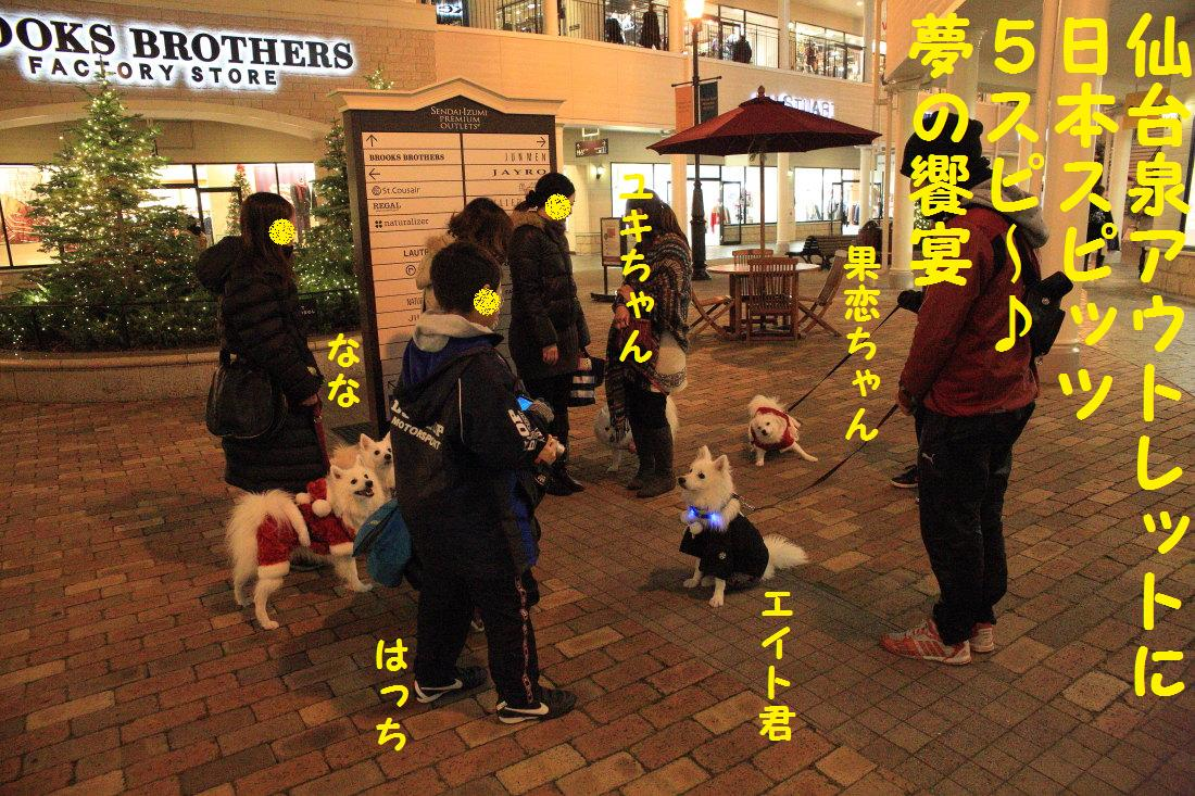 2_20121206124401.jpg