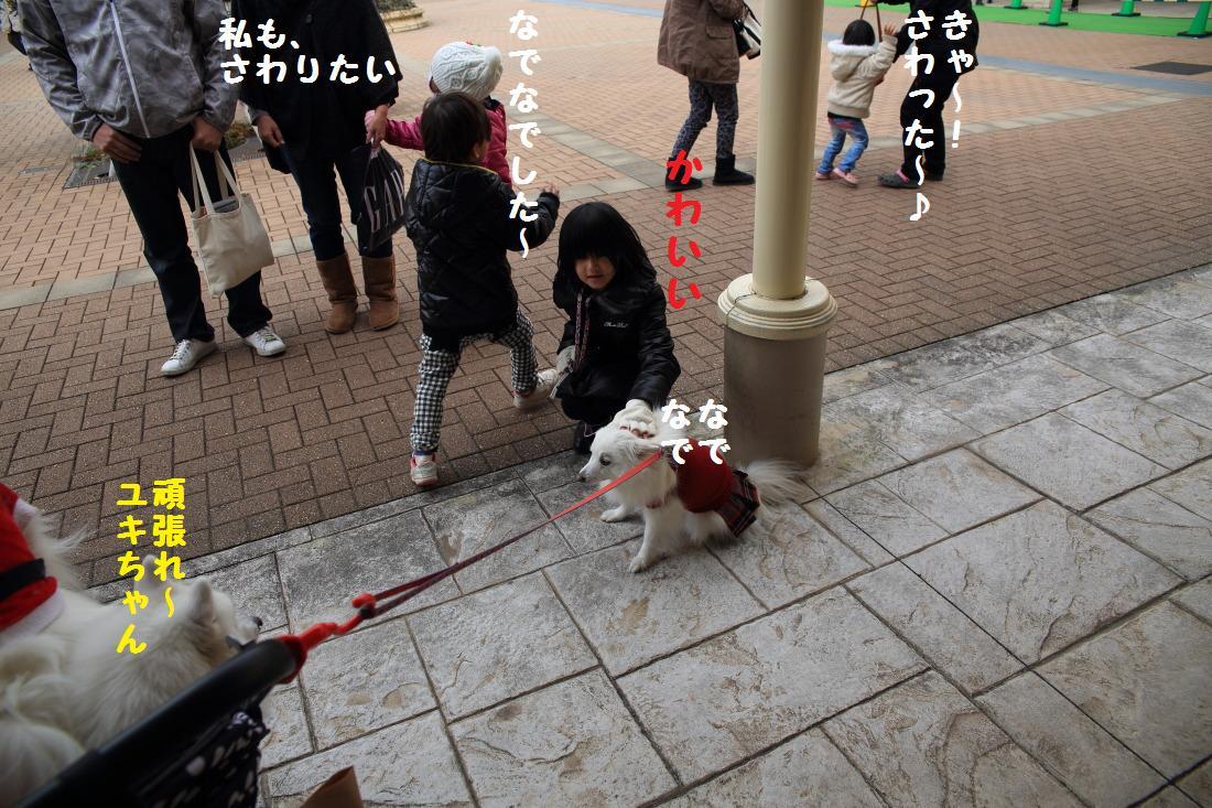 2_20121217160315.jpg