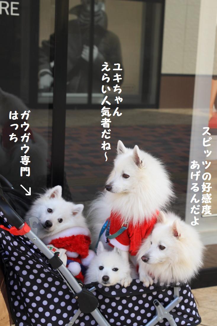3_20121217160314.jpg