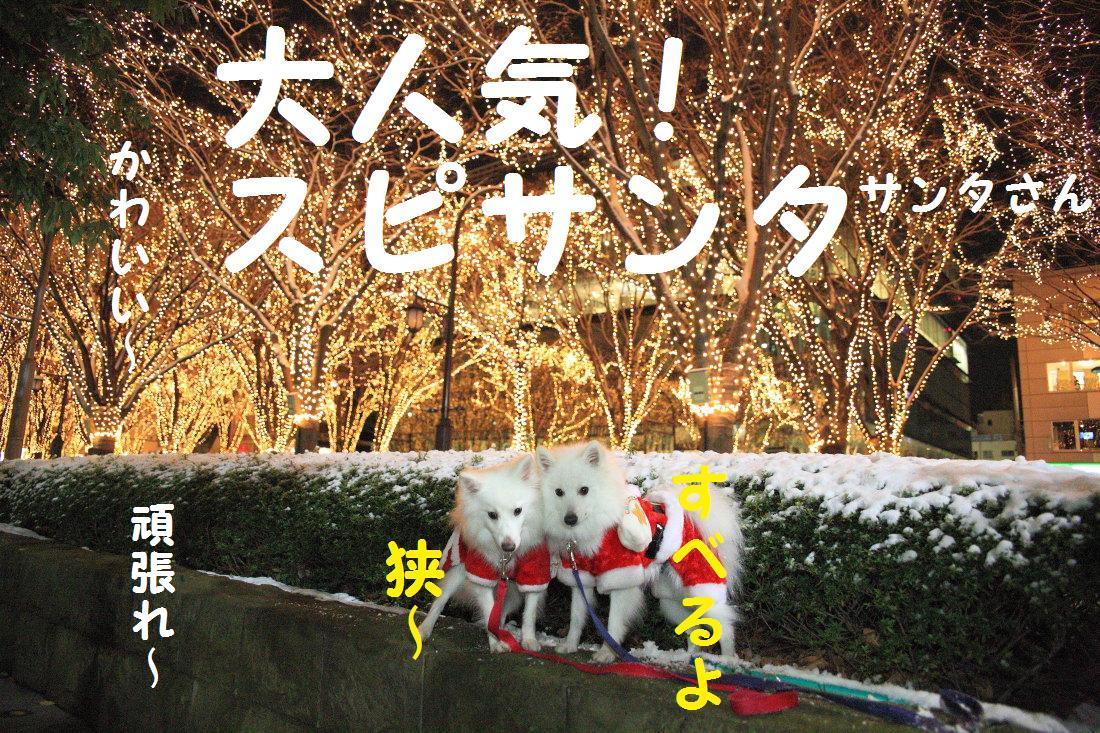 5_20121210102137.jpg