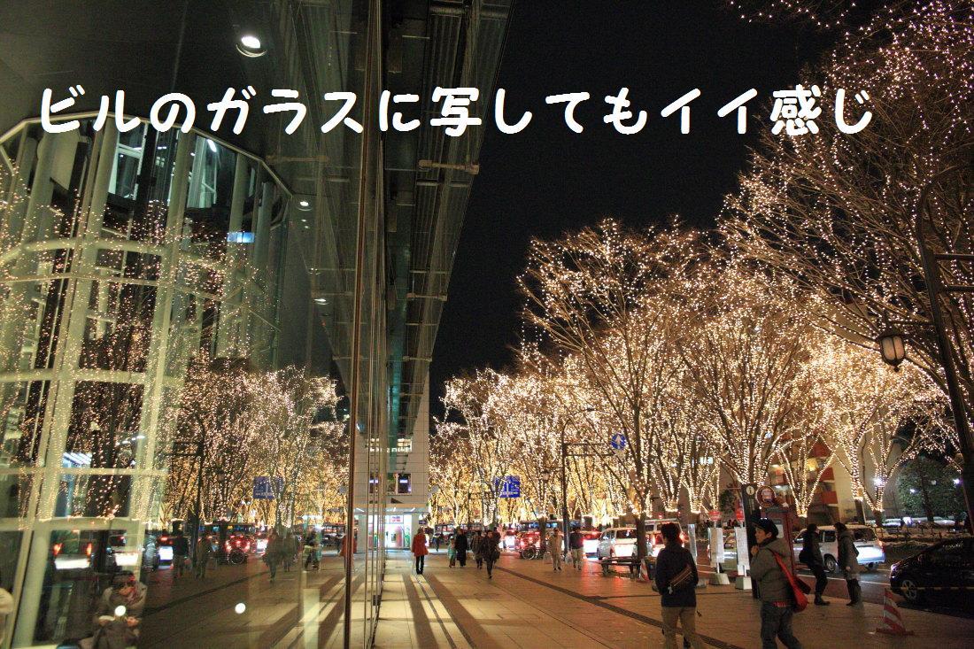 8_20121210102230.jpg