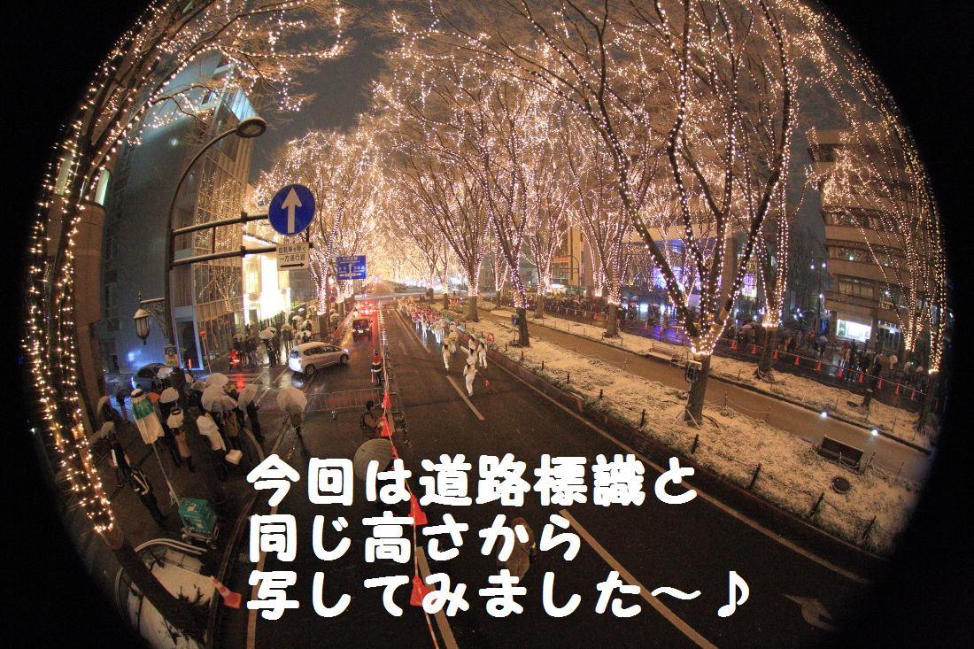 8_20121224194731.jpg