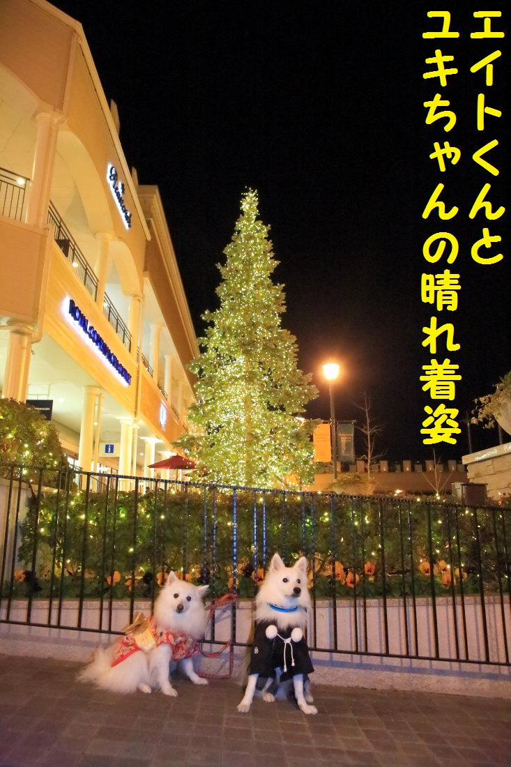 9_20121206124508.jpg