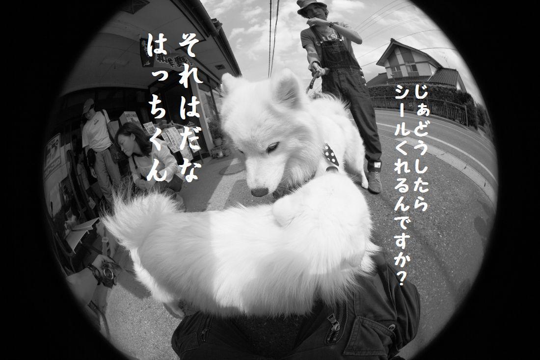 IMG_1628.jpg