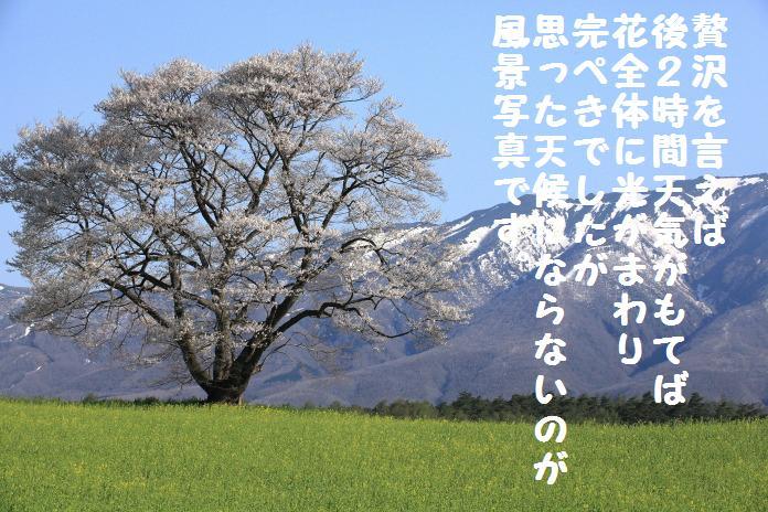 IMG_3807.jpg