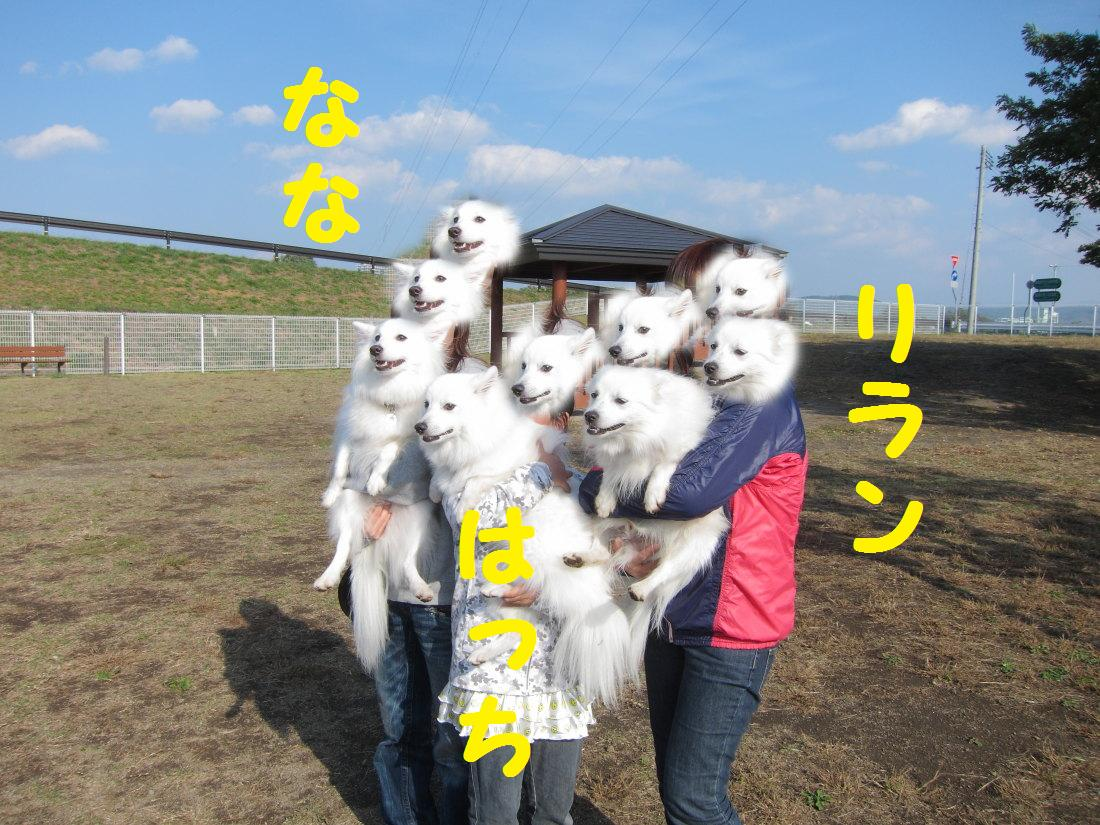IMG_4113.jpg