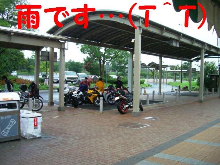 CIMG8509_20120816084830.jpg