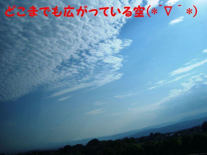 CIMG8634.jpg