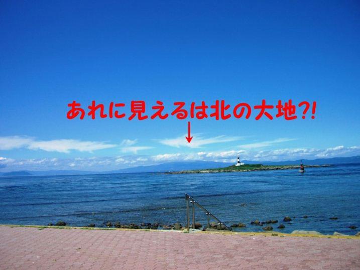 CIMG8705.jpg