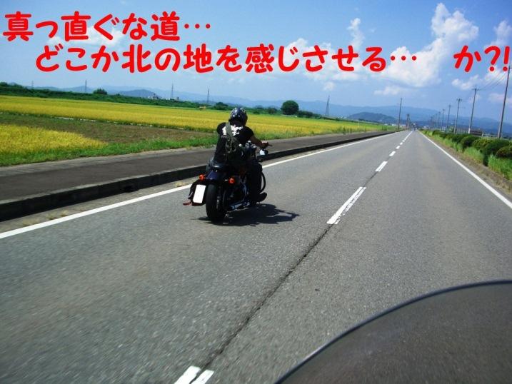 CIMG8760.jpg