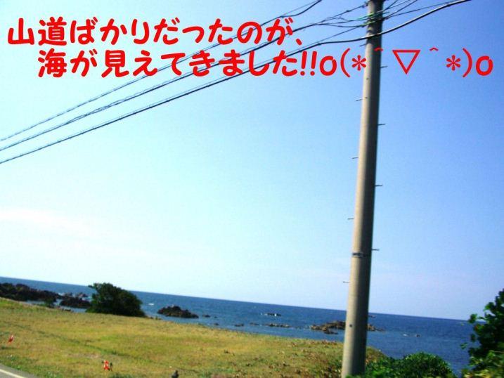 CIMG8766.jpg
