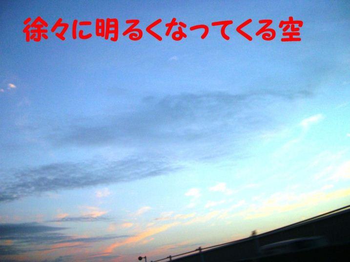 CIMG8825.jpg