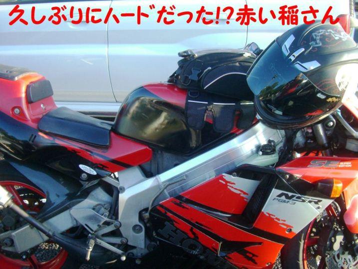 CIMG8831.jpg