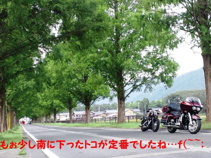DSC_1242.jpg