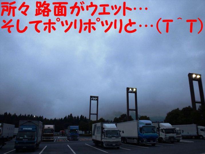 DSC_1263.jpg