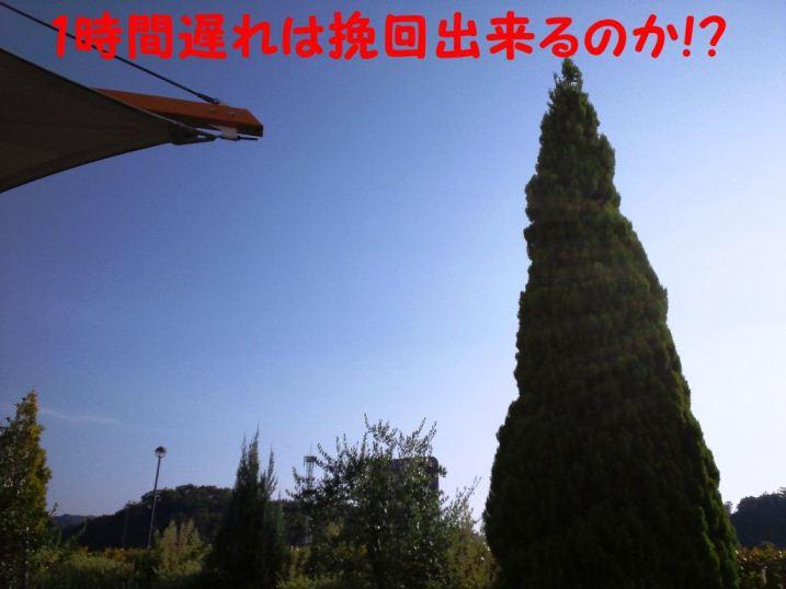 DSC_1302_20121016182357.jpg
