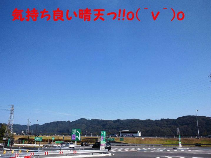 DSC_1303_20121016182723.jpg
