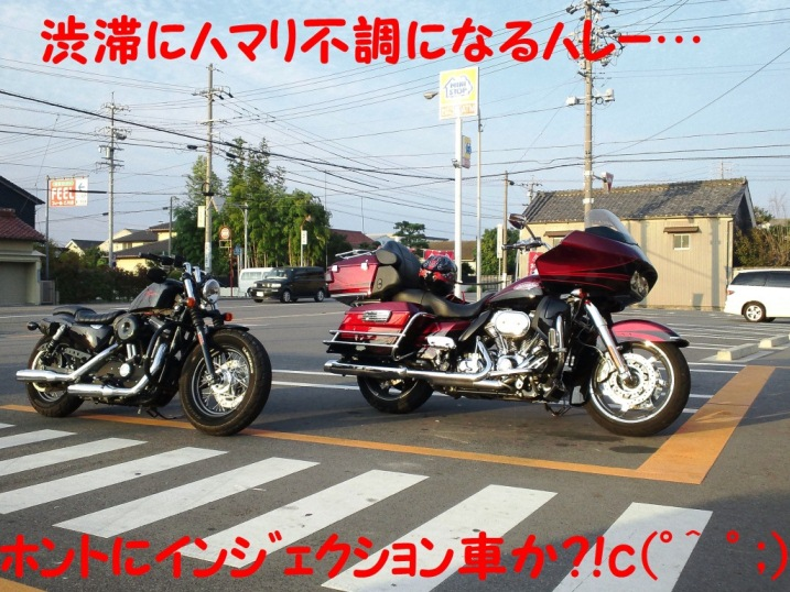 DSC_1304_20121011223841.jpg