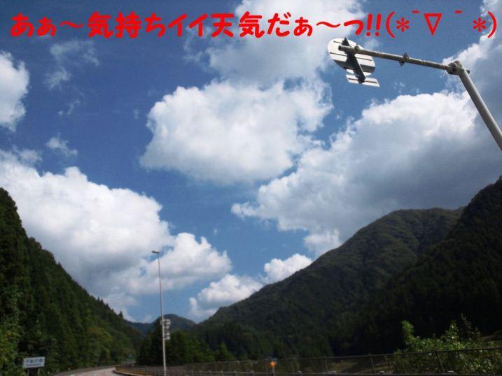 DSC_1305_20121011220209.jpg