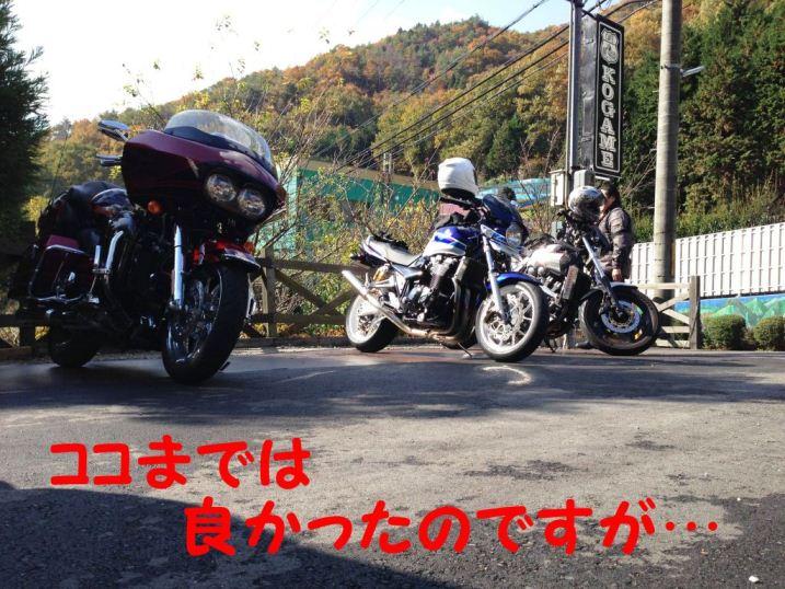 IMG_0020.jpg