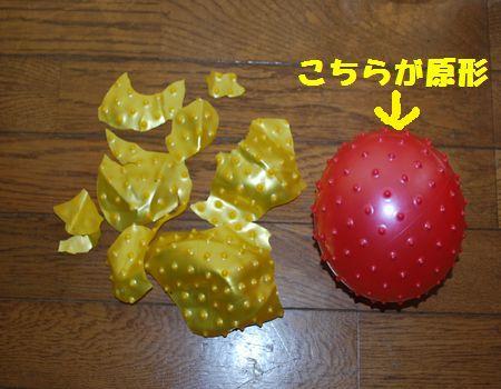 DSC_0047_20120618200305.jpg